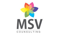 MSV Consultants